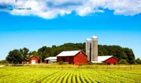 Thẩm định giá trang trại