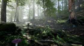 Định giá môi trường rừng