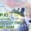 Top 10 công ty tư vấn định cư nước ngoài uy tín tại Việt Nam